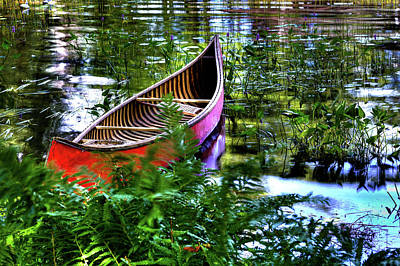 Old Red Canoe Print by David Patterson