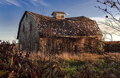 Old Rustic Barn Print by Marty Saccone