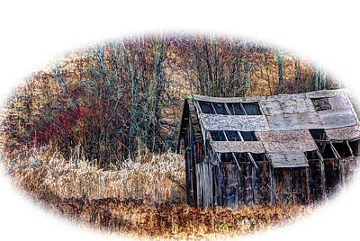 Shed Mixed Media - Old Shed by Loni Collins