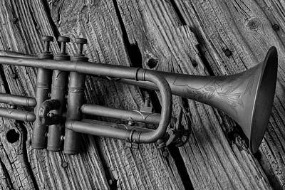 Knotholes Photograph - Old Trumpet Close Up by Garry Gay