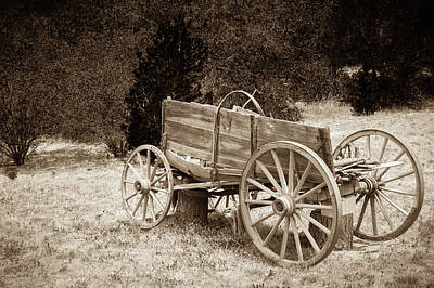 Horse In The Run Photograph - Old Wild West Wagon Abandoned In A Meadow by Bradley Hebdon