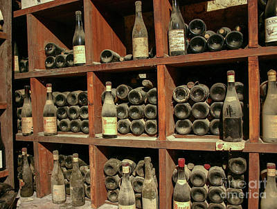 Vino Photograph - Old Wine Cellar by Patricia Hofmeester