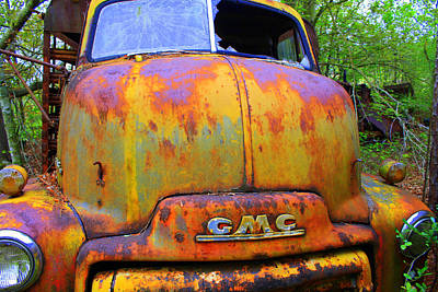 Ole Rusty Full Frontal Print by Dana  Oliver