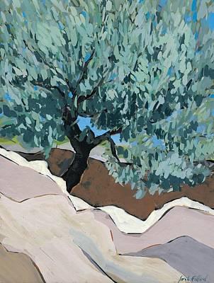 Olive Tree In Crevice Print by Sarah Gillard