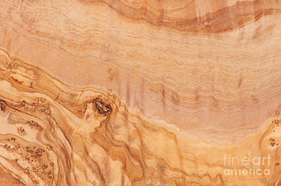 Olive Wood Photograph - Olive Wood Surface Texture Abstract by Arletta Cwalina