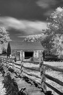 On The Farm Print by Joann Vitali