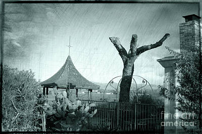 Mission San Juan Bautista Photograph - Once A Tree, Green by Michael Ziegler