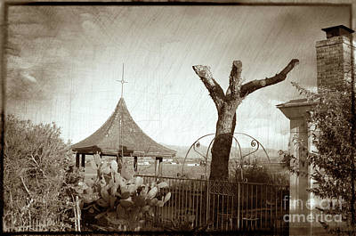 Mission San Juan Bautista Photograph - Once A Tree, Sepia by Michael Ziegler