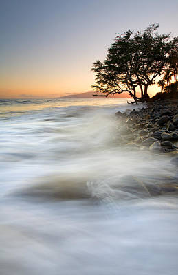 Banyan Tree Photograph - One Against The Tides by Mike  Dawson
