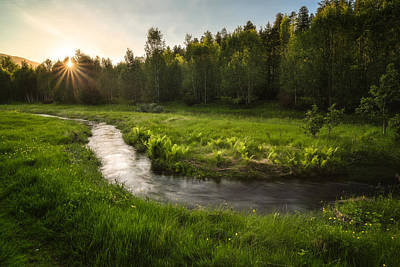 One Day Of Summer Print by Tor-Ivar Naess