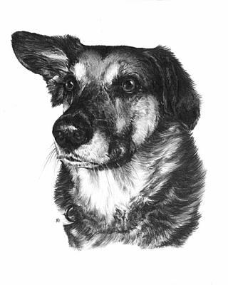 Companion Drawing - One Ear by Rachel Christine Nowicki
