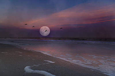 Full Moon Photograph - One In A Million  by Betsy Knapp