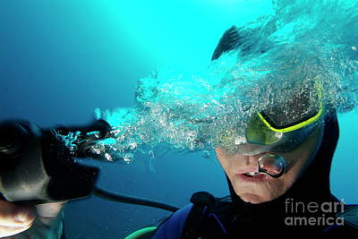 One Scuba Diver Pulls The Breathing Regulator Out Of His Mouth While Still Underwater Print by Sami Sarkis