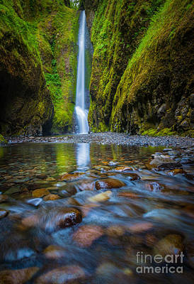 Ravine Photograph - Oneonta Cascades by Inge Johnsson
