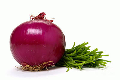 Chives Photograph - Onion And Chives by Olivier Le Queinec