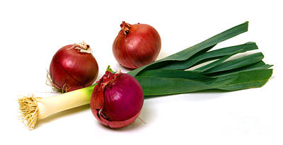 Onion And Leek Print by Olivier Le Queinec