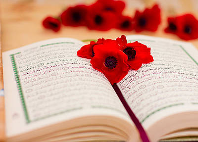 Ayat Photograph - Open Quran With Red Flower by Elza Al-Smadi