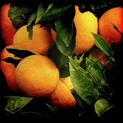Oranges Print by Ernie Echols
