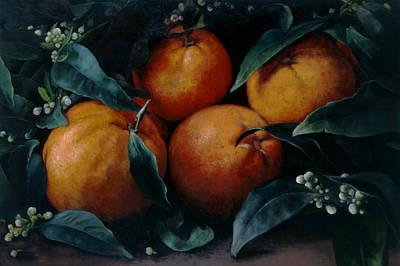 Vines Painting - Oranges by Kira Weber