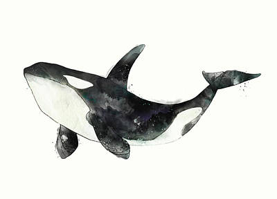 Whale Mixed Media - Orca From Arctic And Antarctic Chart by Amy Hamilton