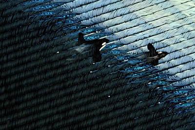Orca Digital Art - Orca Invitational by Carmen Hathaway