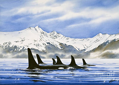 Whale Painting - Orca by James Williamson