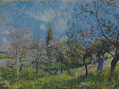 Painting - Orchard In Spring. By by Alfred Sisley