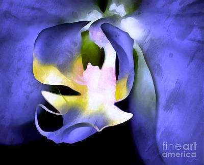 Flower Design Photograph - Orchid Of Life by Krissy Katsimbras