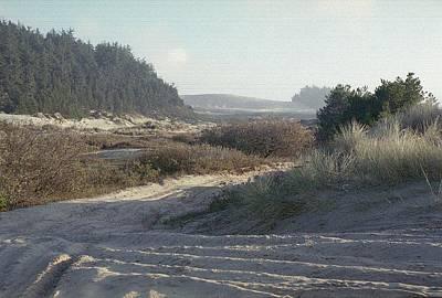 Oregon Dunes 5 Print by Eike Kistenmacher