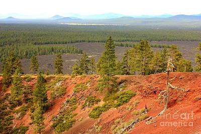 Oregon Landscape - View From Lava Butte Original by Carol Groenen