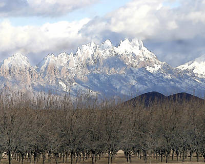 Organ Mountains In Snow Print by Elaine Frink