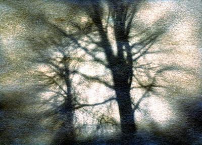 Original Tree Print by Diana Ludwig