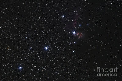 Orions Belt, Horsehead Nebula And Flame Print by Luis Argerich
