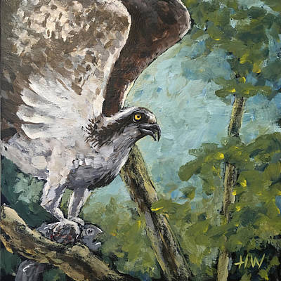 Osprey Mixed Media - Osprey In Tree With Breakfast by Holly Whiting