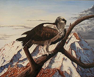 Osprey Painting - Osprey Lost by Karen Musick