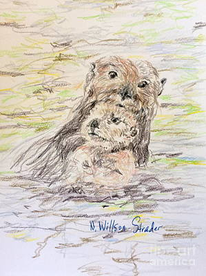 Otter Drawing - Otter And Baby by N Willson-Strader
