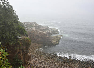 Otter Cliffs - Acadia National Park Maine Print by Brendan Reals