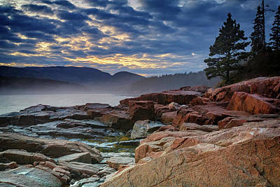 Otter Cove In The Mist Print by Rick Berk