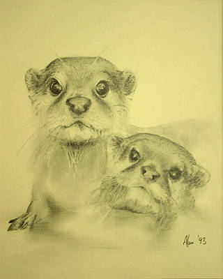 Otter Drawing - Otters by Alan Pickersgill