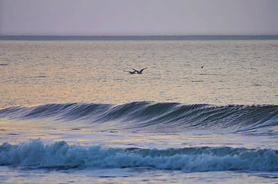 Seagull Digital Art - Over The Waves by Bill Cannon
