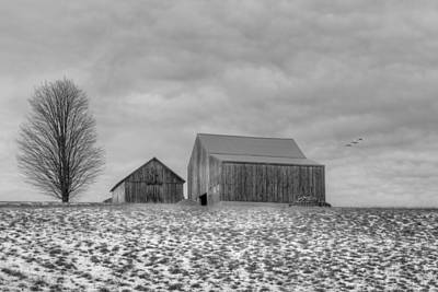 Overcast Bw Print by Bill Wakeley