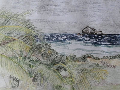 Overcast Day In Guana Bay Original by Margaret Brooks