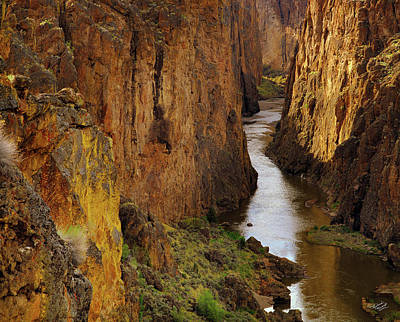 Canyon Photograph - Owhyee River by Leland D Howard
