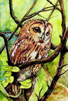 Owl From Butterfingers And Secrets Print by Morgan Fitzsimons