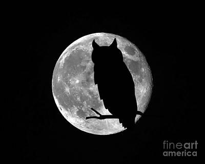 Owl Moon Print by Al Powell Photography USA