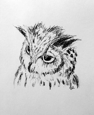 Contemplating Drawing - Owl Study by Victoria Lakes