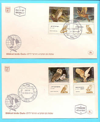 owls First day cover Print by Ilan Rosen