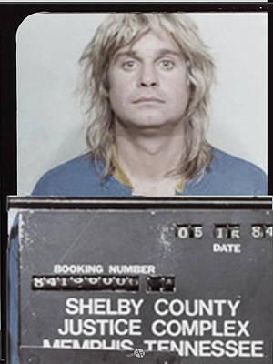 Abuse Painting - Ozzy Osbourne Mug Shot Muted Vertical by Tony Rubino