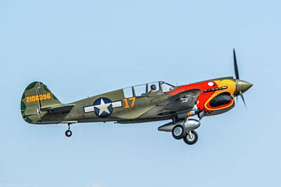 Photograph - P-40 Aluetian Tiger by Tommy Anderson