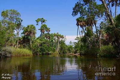 Paddling Otter Creek Original by Barbara Bowen
